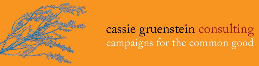 Cassie Gruenstein Consulting